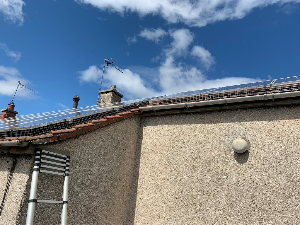 Pidgeon proofing in Edinburgh for solar panels